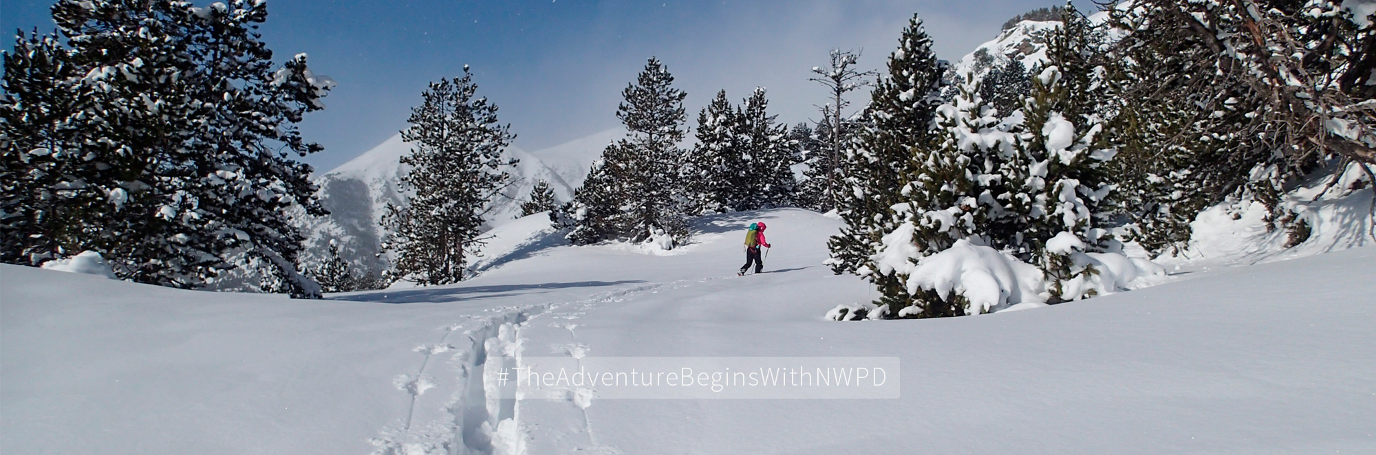 NWPD-ski-touring-2019